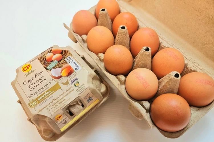 ซีพีเอฟ เพิ่มการผลิตไข่ไก่ Cage Free ตอบโจทย์ผู้บริโภคใส่ใจสุขภาพ และเป็นมิตรต่อสิ่งแวดล้อม